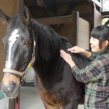 大人のためのウマ育教室「馬も人も癒されるホースセラピー体験」編