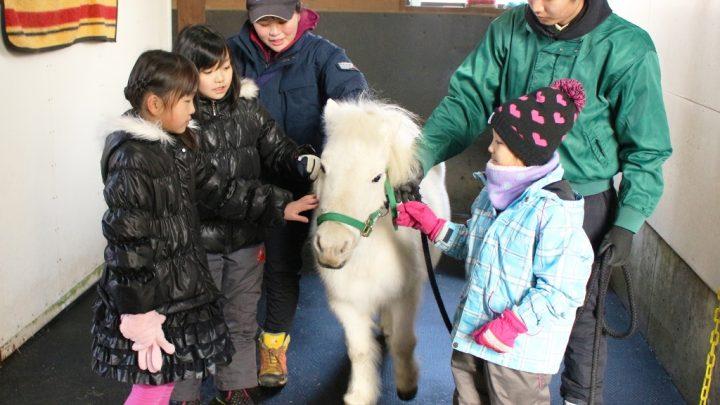 ウマ育教室「馬の生態を知ろう!」編