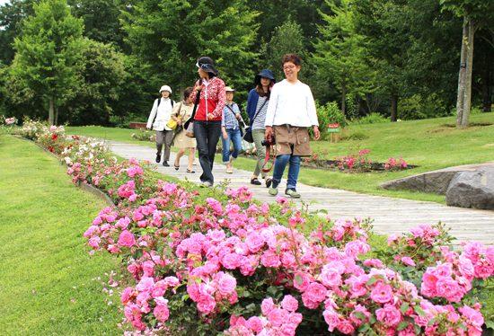 ガーデンデザイナー 梅木あゆみさんによる「K's ガーデンガイドツアー」[定員に達したため受付を終了しました]