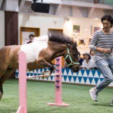 第 5回 JRA 日本中央競馬会所属ジョッキーによる ファン交流イベント&チャリティオークション